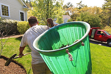 Landscaper removing weeds in a bin to his truck