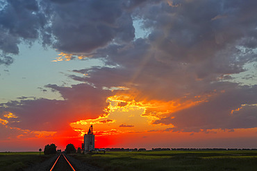 A grain storage facility at sunset with sinking sun in a glowing pink sky behind a farm; Alberta, Canada