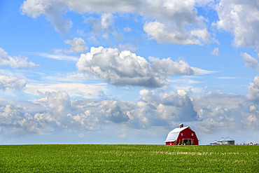 A red barn sits on a green field of farmland under a big blue sky with cloud; Alberta, Canada
