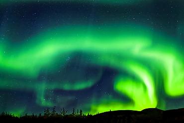 Intense aurora waving over Mount Fairplay, Taylor Highway, Interior Alaska in autumn; Alaska, United States of America
