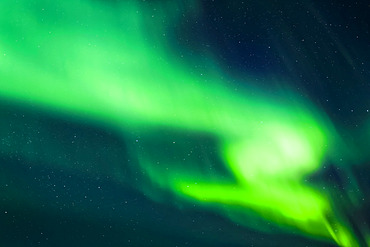 Bright aurora dancing in the sky, Taylor Highway, Interior Alaska in autumn; Alaska, United States of America