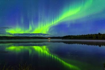 Bright green aurora dancing over Birch Lake with reflections, Interior Alaska in autumn; Fairbanks, Alaska, United States of America