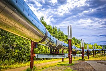 Trans-Alaska Pipeline, Interior Alaska in summertime; Fairbanks, Alaska, United States of America