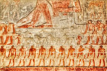 Reliefs, Mastaba of Mereruka, Necropolis of Saqqara, UNESCO World Heritage Site; Saqqara, Egypt