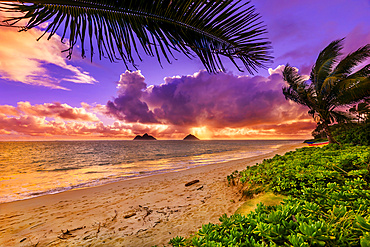 Lanakai Beach at sunrise, with the surf washing up on the sand and a view of the Mokulua Islands in the distance; Oahu, Hawaii, United States of America