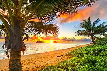 Bright sunrise over Mokulua Islands, viewed from Lanakai Beach on the coast of Oahu; Oahu, Hawaii, United States of America