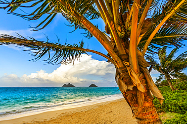 The golden sand and surf on Lanikai Beach with a view of the Mokulua Islands off the coast; Oahu, Hawaii, United States of America
