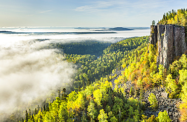 Sunrise over a misty, foggy valley in the Canadian Shield; Dorian, Ontario, Canada