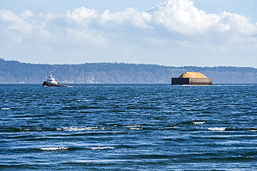 Barge and tugboat viewed from Marrowstone Island; Washington, United States of America