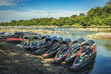 Tour boats to Yaxchilan lined up along the shore; Usumacinta Province, Chiapas, Mexico