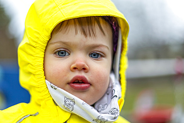 Cute toddler girl with blue eyes wearing bright yellow raincoat; North Vancouver, British Columbia, Canada