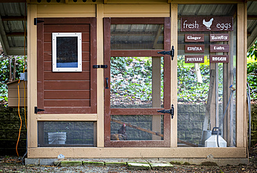 Chicken coop with sign for fresh eggs and the names of the chickens; Bothell, Washington, United States of America