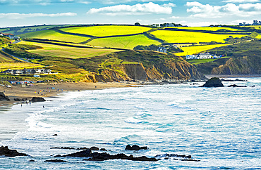 A patchwork of hilly fields bordered by trees and shrubs along the cliffs with blue sky and clouds; Cornwall County, England