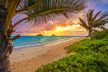 Lanakai Beach at sunrise, with the surf washing up on the golden sand and a view of the Mokulua Islands in the distance; Oahu, Hawaii, United States of America