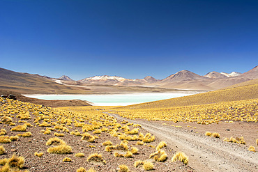 Gravel road leads to a high altitude laguna in the middle of a colourful South American landscape in the Andes, Eduardo Avaroa Andean Fauna National Reserve; Potosi, Sur Lipez, Bolivia