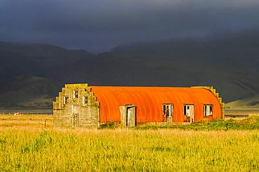 Orange quonset hut as a barn on farm field; Myrdalshreppur, Southern Region, Iceland