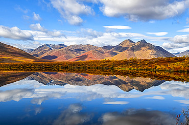 Fall colours ignite the landscape of the Dempster Highway with vibrant colours reflected as a mirror image in a tranquil lake; Dawson City, Yukon, Canada