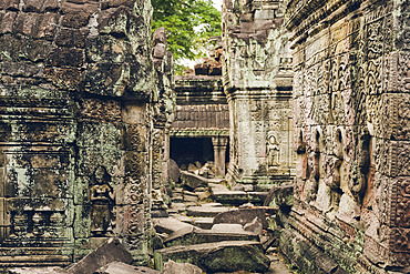 Preah Khan Temple in the Angkor Wat complex; Siem Reap, Cambodia