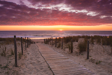Wooden walkway leading to a French beach on the Atlantic coast with a setting sun during summer; Lacanau, France