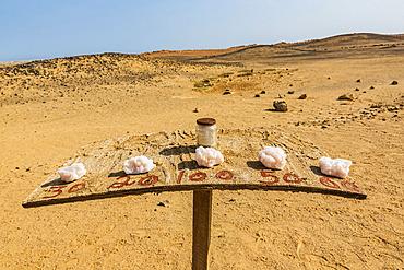 Salt rocks for sale, Skeleton Coast, Dorob National Park; Namibia