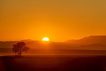 Sunrise in Aluvlei, Namib-Naukluft National Park; Namibia