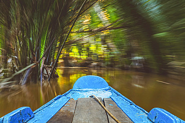 Boat on the Mekong River, Mekong River delta; Vietnam