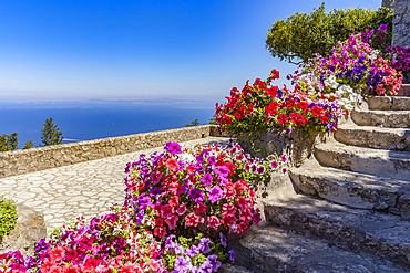 Blossoming flowers in containers lining steps on the Island of Capri with a view of the Tyrrhenian Sea, Mediterranean; Capri, italy