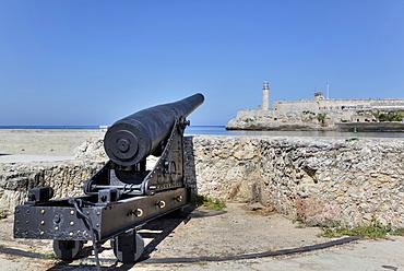 Cannon, Castillo de San Salvador de la Punta, Castillo del Morro (background); Central; Havana, Cuba