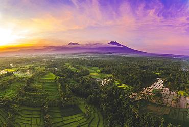 Sunset at Licin Rice Terraces; East Java, Java, Indonesia