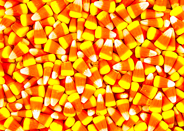 Many pieces of candy corn; Studio