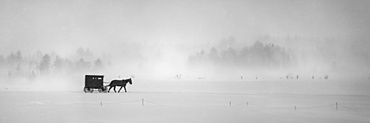 Horse and buggy in a snowstorm; Sault St. Marie, Michigan, United States of America