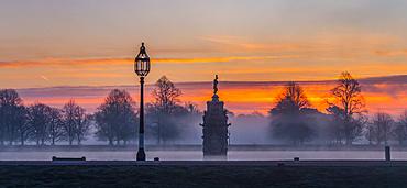Bushey Park on a misty morning during a dramatic sunrise; London, England
