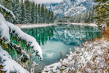 Beautiful reflections in a tranquil pond of the forest and the Rocky Mountains of Banff National Park in autumn; Alberta, Canada