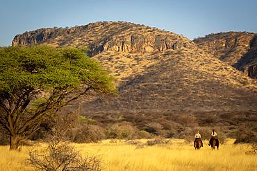 View taken from behind of two women riding horses (Equus ferus caballus) traveling past acacia tree through the bush towards the hills at the Gabus Game Ranch at sunset; Otavi, Otjozondjupa, Namibia