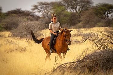 Woman riding horse (Equus ferus caballus) through the bush on the savanna at the Gabus Game Ranch; Otavi, Otjozondjupa, Namibia