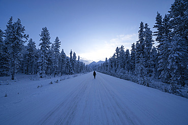 Woman walking down a snow covered road near Whitehorse; Yukon, Canada