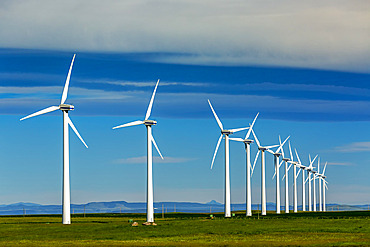 Rows of large wind turbines on a green field with clouds and blue sky and a mountain range in the distance, North of Waterton; Alberta, Canada