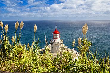 The Farol do Arnel Lighthouse at Ponta do Arnel near Nordeste overlooking the Atlantic Ocean; Sao Miguel Island, Azores