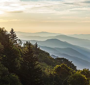 Majestic Mountains in a Gentle Haze in Western North Carolina; North Carolina, United States of America