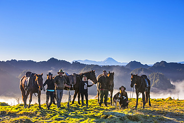 The Blue Duck lodge located in the Whanganui National Park is a working cattle farm with a focus on conservation. Travelers take horses to a scenic viewpoint to watch the sunrise over the rainforest; Retaruke, Manawatu-Wanganui, New Zealand