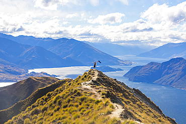 Man standing on mountaintop at Roys Peak waving the New Zealand flag after the strenuous hike to the lookout to see the spectacular views of Wanaka Lake and surrounding mountains of the Southern Alps; Otago, New Zealand