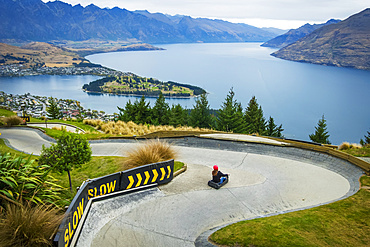 The famed luge that sits with a view over Lake Wakatipu and Queenstown city; Queenstown, Otago, New Zealand