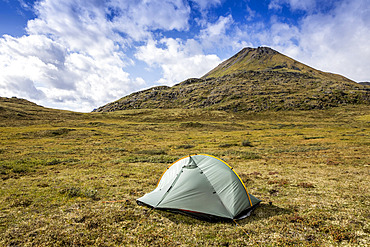 Green backpacking tent set up on the tundra with mountain in background on a sunny summer day in the Brooks Range, Arctic National Wildlife Refuge (ANWR); Alaska, USA