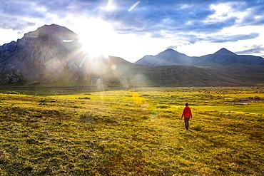 Woman wearing a red rain coat walks on the tundra towards the setting late summer sun in the Brooks Range, Arctic National Wildlife Refuge; Alaska, United States of America