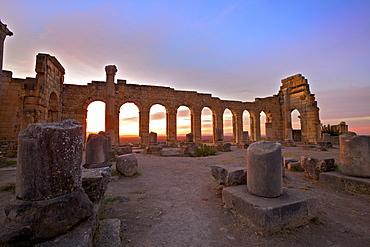 Excavated Roman City, Volubilis, UNESCO World Heritage Site, Morocco, North Africa, Africa