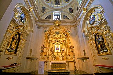 Interior of Corpus Christi Basilica, Kazimierz, Krakow (Cracow), Poland, Europe