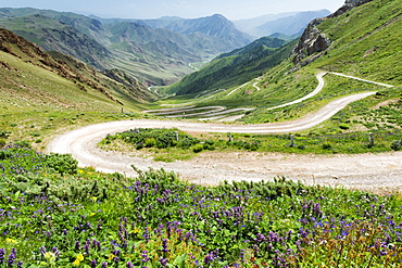 Road to Song Kol Lake, Parrot Pass, Naryn province, Kyrgyzstan, Central Asia, Asia