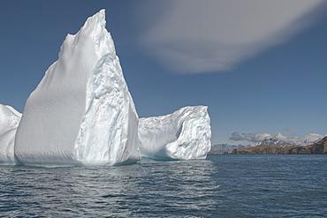 Ocean Harbour, Floating Icebergs, South Georgia Island, Antarctic, Polar Regions