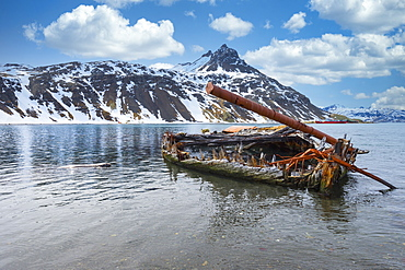 Whaleboat Louise wreck, former Grytviken whaling station, King Edward Cove, South Georgia and the Sandwich Islands, Antarctica, Polar Regions