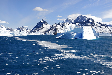 Drygalski Fjord, Floating Icebergs, South Georgia, South Georgia and the Sandwich Islands, Antarctica, Polar Regions